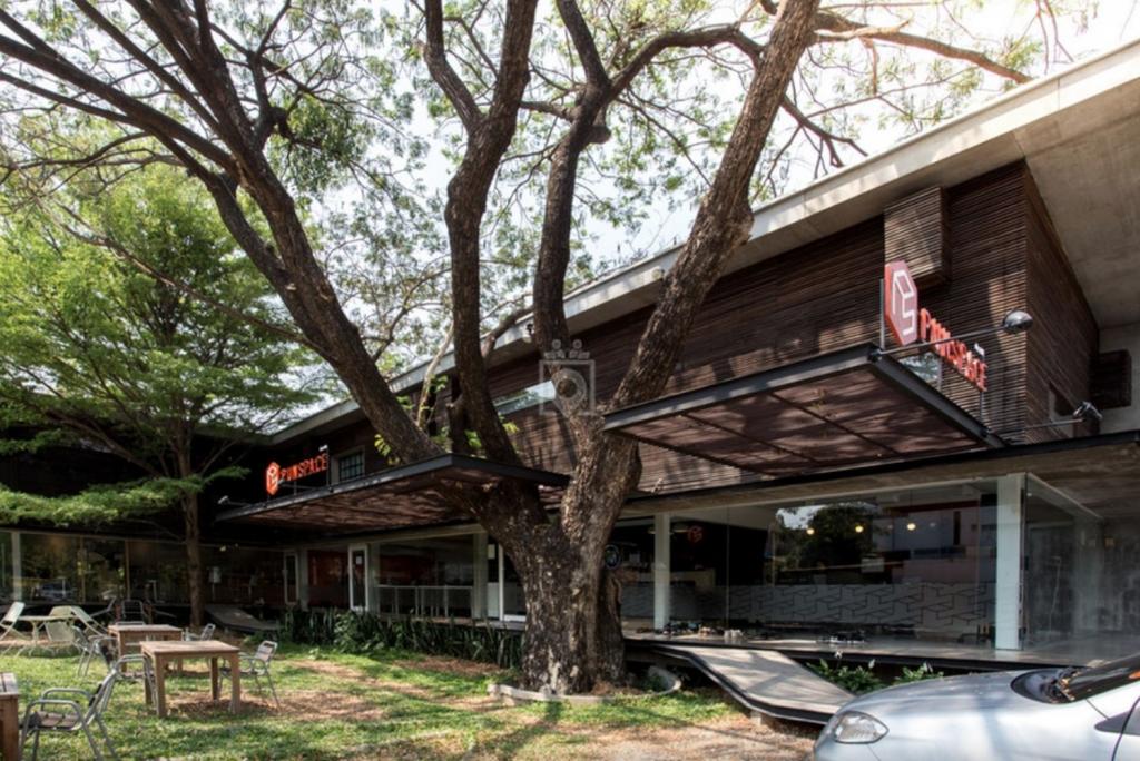 Punspace Chiangmai